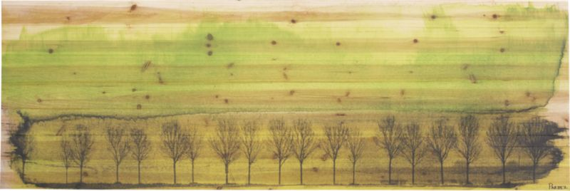 algonquin wood print