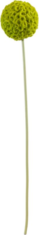 large green artificial allium flower stem
