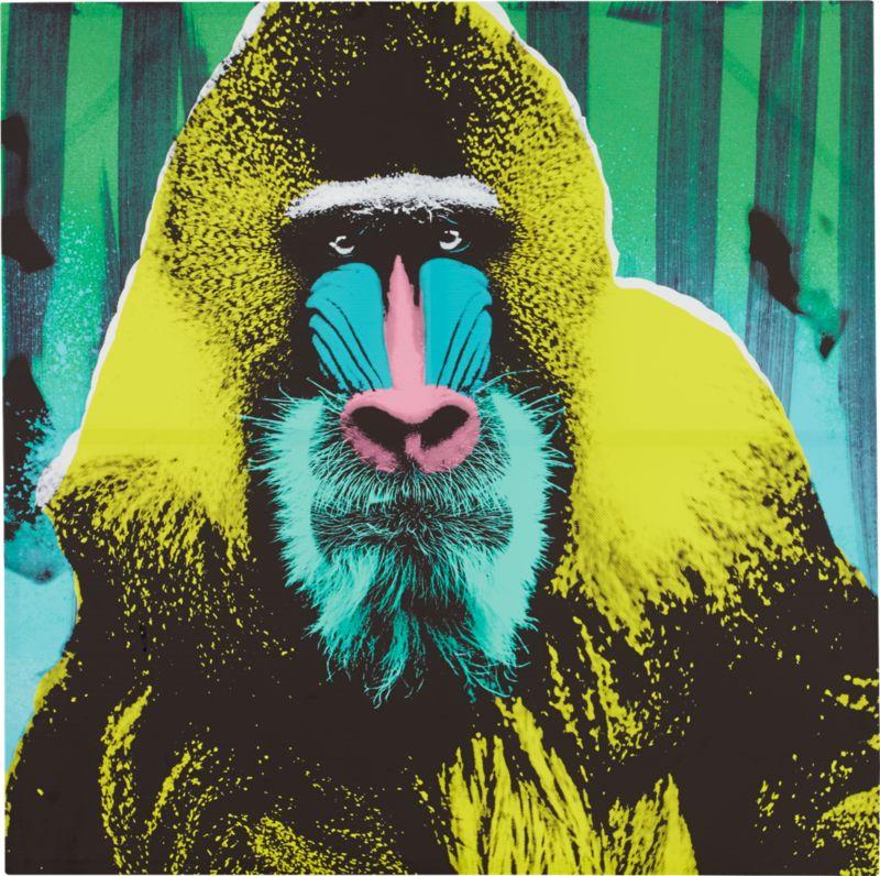 baboon print