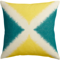 "dichromic X 20"" pillow"