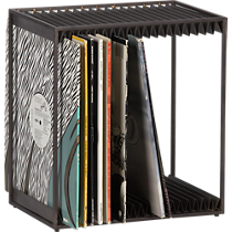 display modular vinyl storage