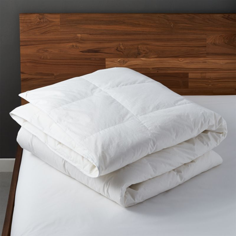 Down Full Queen Duvet Insert Cb2