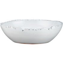 fault serve bowl