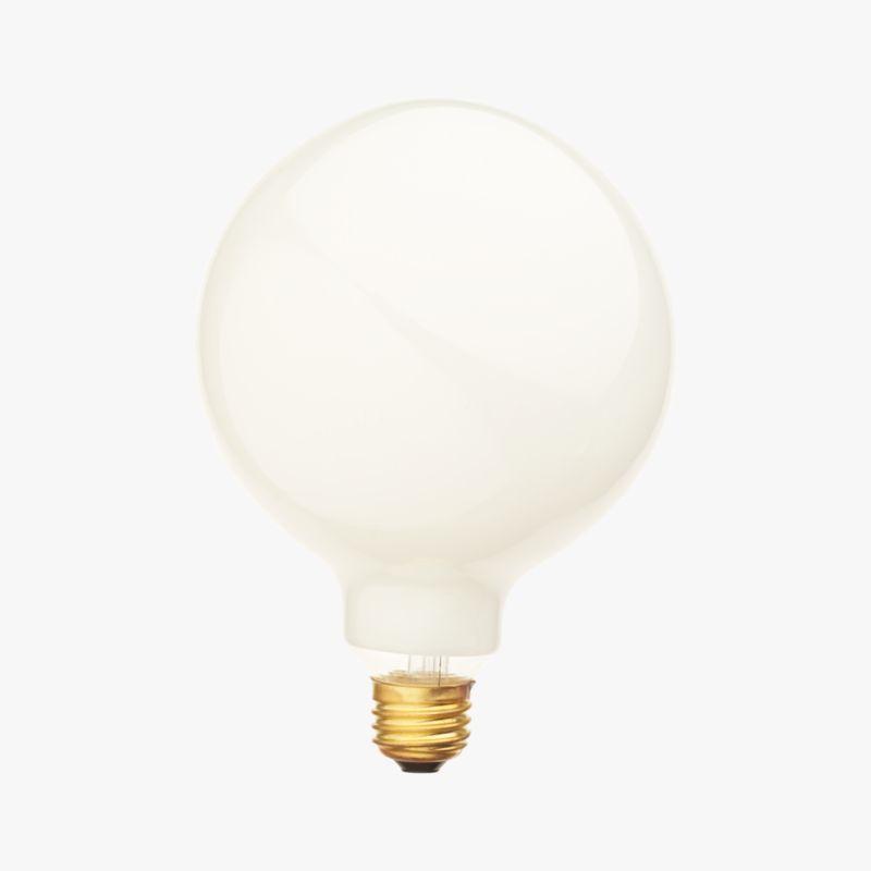 G40 Large Globe 60w Light Bulb Cb2