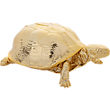 gold turtle