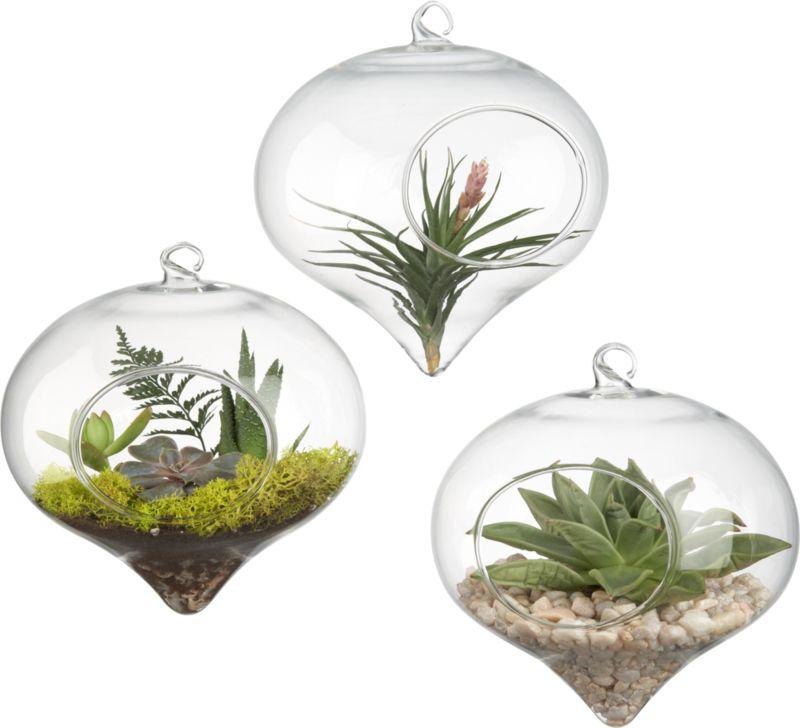 hanging glass terrarium | CB2
