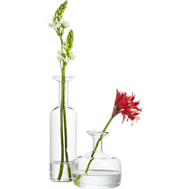 long and short neck glass vases