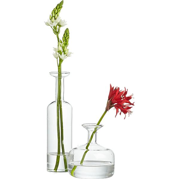 Beaker glass tube 8 wall vase cb2 for Transparent glass wall