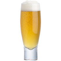 salud beer glass