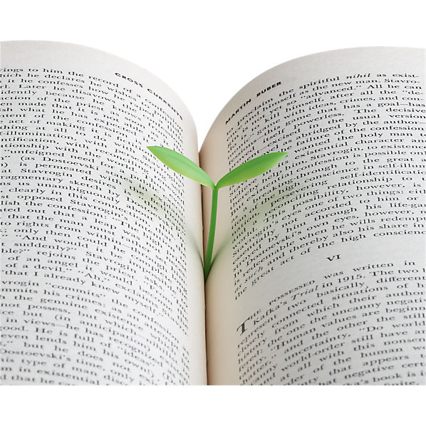 SproutBookmarkAV1F12