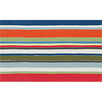 stripe multi rug