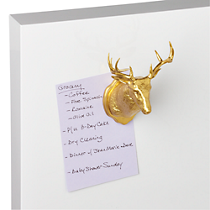 taxidermy magnet